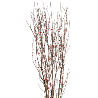 Berried Branches - Natural with Red Berries