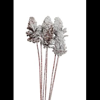 Pine Cones Medium 7-10cm (4 stem) Snow