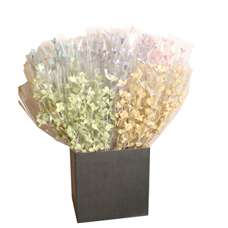 Displayer - Blossom Branches (Assorted White Washed) 5 colours