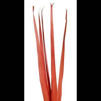 Sunpalm Leaves (7 stem) Orange