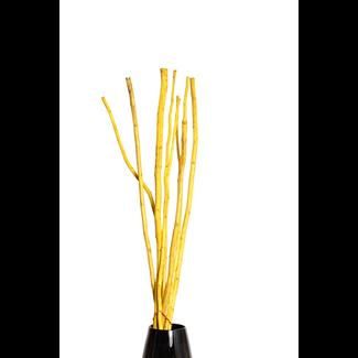 Mitsui Stick (8 stem) Yellow