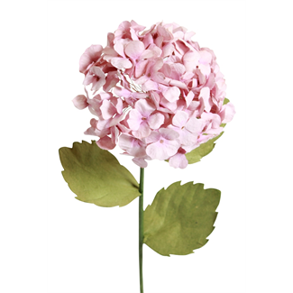 Paper Hydrangea - Lavender