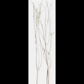 Mitsumata (3 pcs) White glitter