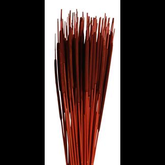 Cattails Pencil (100 pcs) Brown