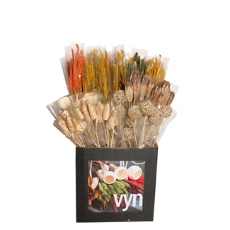 Displayer - Grasses & Grains & botanicals(50 Pack) Autumn