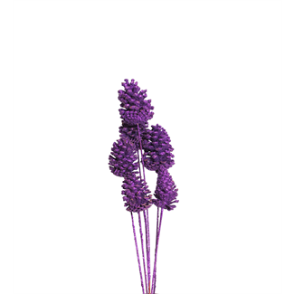 Pine Cones Medium 7-10cm (8 stem) Purple glitter