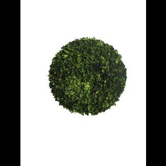 Topiary - Boxwood ball - 40 x 40 x 40 cm
