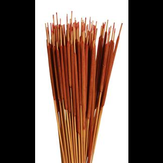 Cattails Pencil (100 pcs) Orange