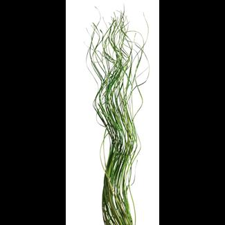 Wavy Ting  (3 oz) Spring Green