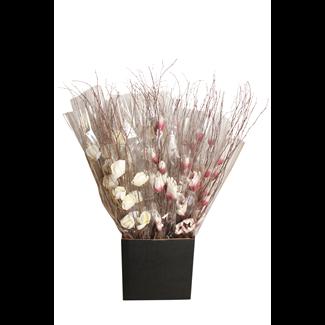 Displayer - Magnolia Branch (1 stem) Purple/White & White (pk 25)