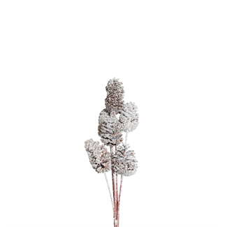 Pine Cones Medium 7-10cm (8 stem) Snow