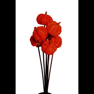 Fiber Pumpkins (8 stem) Orange