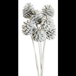 Pine cones Regular (10 stem) White glitter