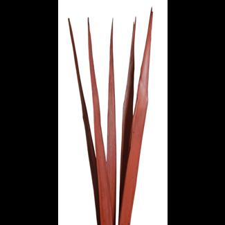 Sunpalm Leaves (7 stem) Mahogany